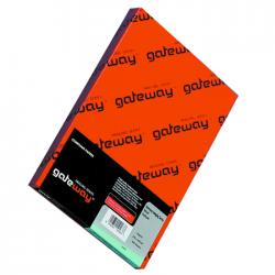 Calc A3 Gateway 90-95 g/mp 250 coli/top